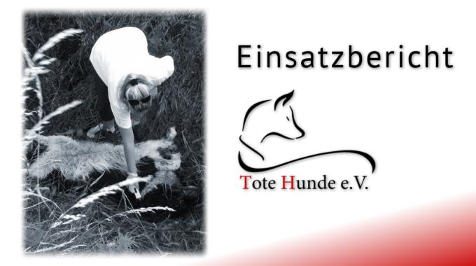 #totehunde – Bericht Nr. 6 Aus Sachsen