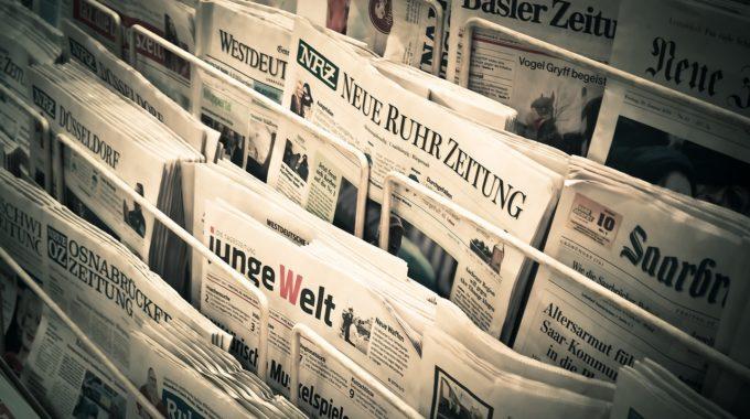 Presse: Interview Bei Wohlstandshund