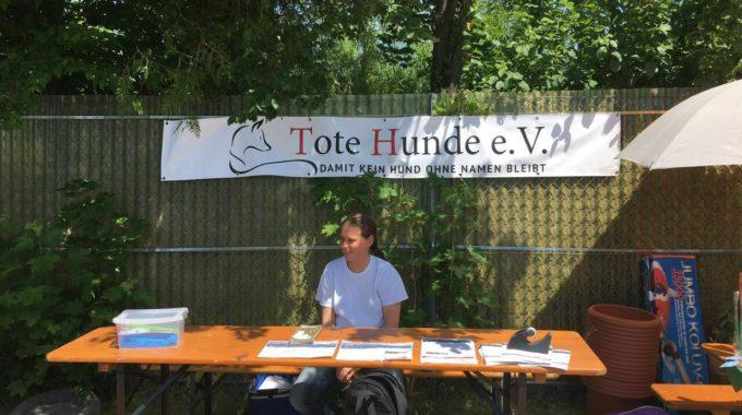 Stand Im Tierheim Unternesselbach