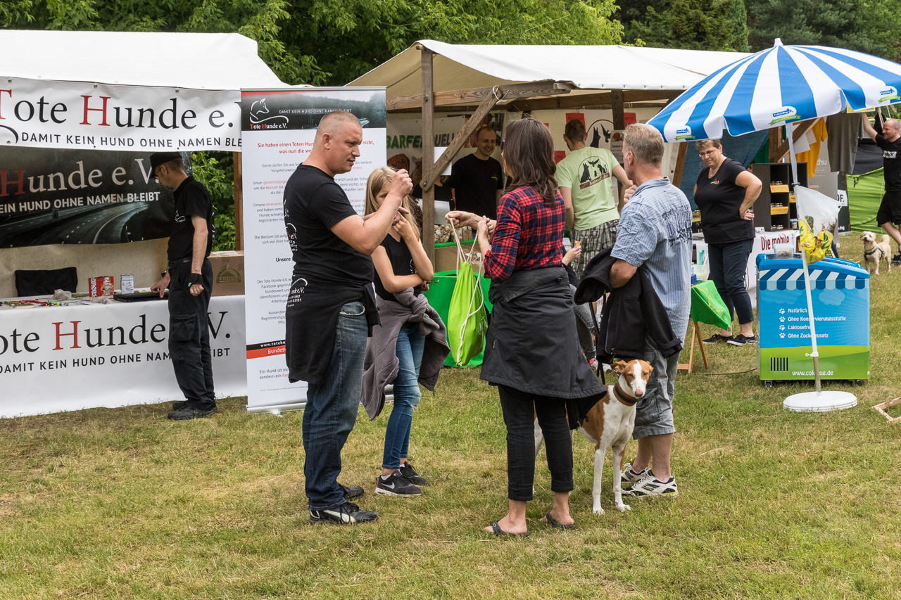 infostand von tote hunde e v beim hundetag im tierpark berlin 2017. Black Bedroom Furniture Sets. Home Design Ideas