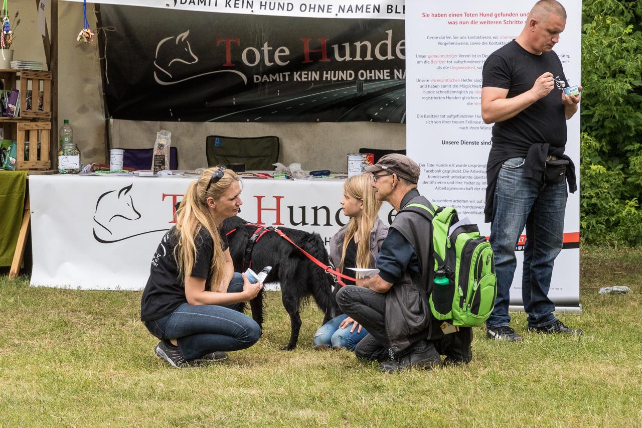 Tote_Hunde_Hundetag2017_05