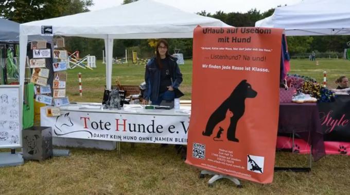 Hundetag In Merseburg