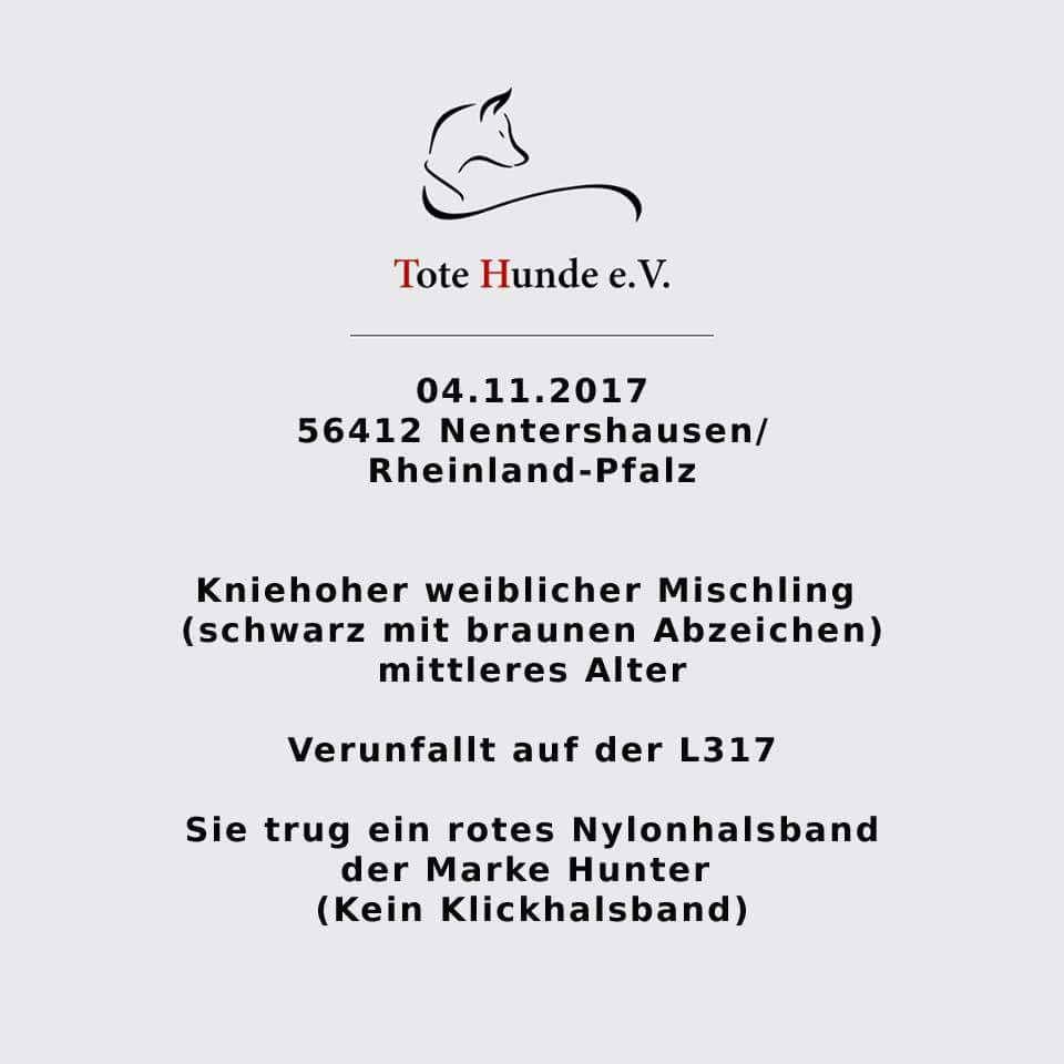 201711: 56412 Nentershausen