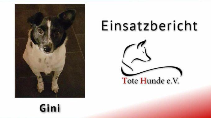 #totehunde – Bericht Nr. 89 Aus Nordrhein-Westfalen